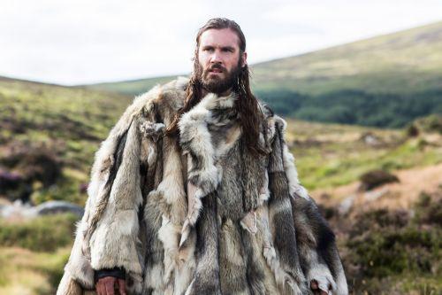 barba viking série