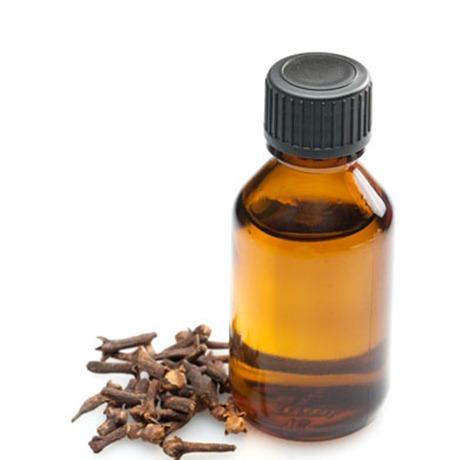 oleo essencial de cravo de unhas
